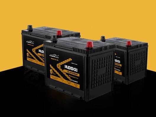 Batterie Addo Platinum